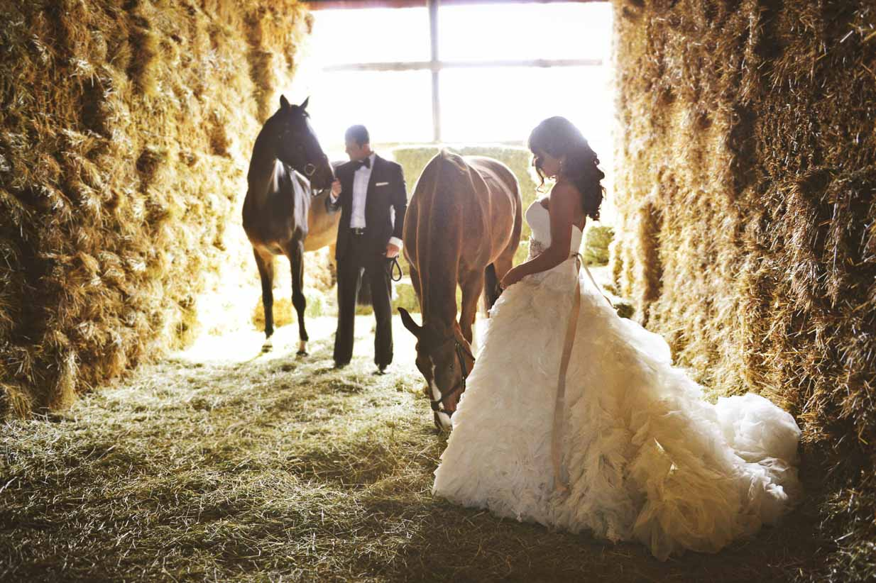 Spruce Meadows Wedding with Horses | Destination Wedding Photographer | SLIVER Photography