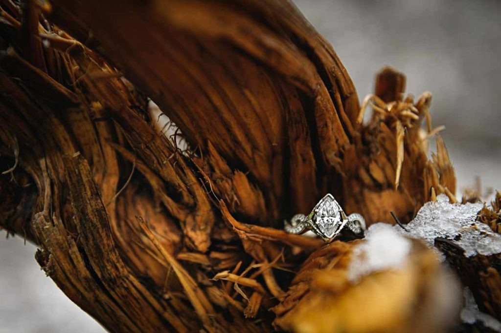 Ring in Wood Stump | Calgary Engagement Photographer | SLIVER Photography