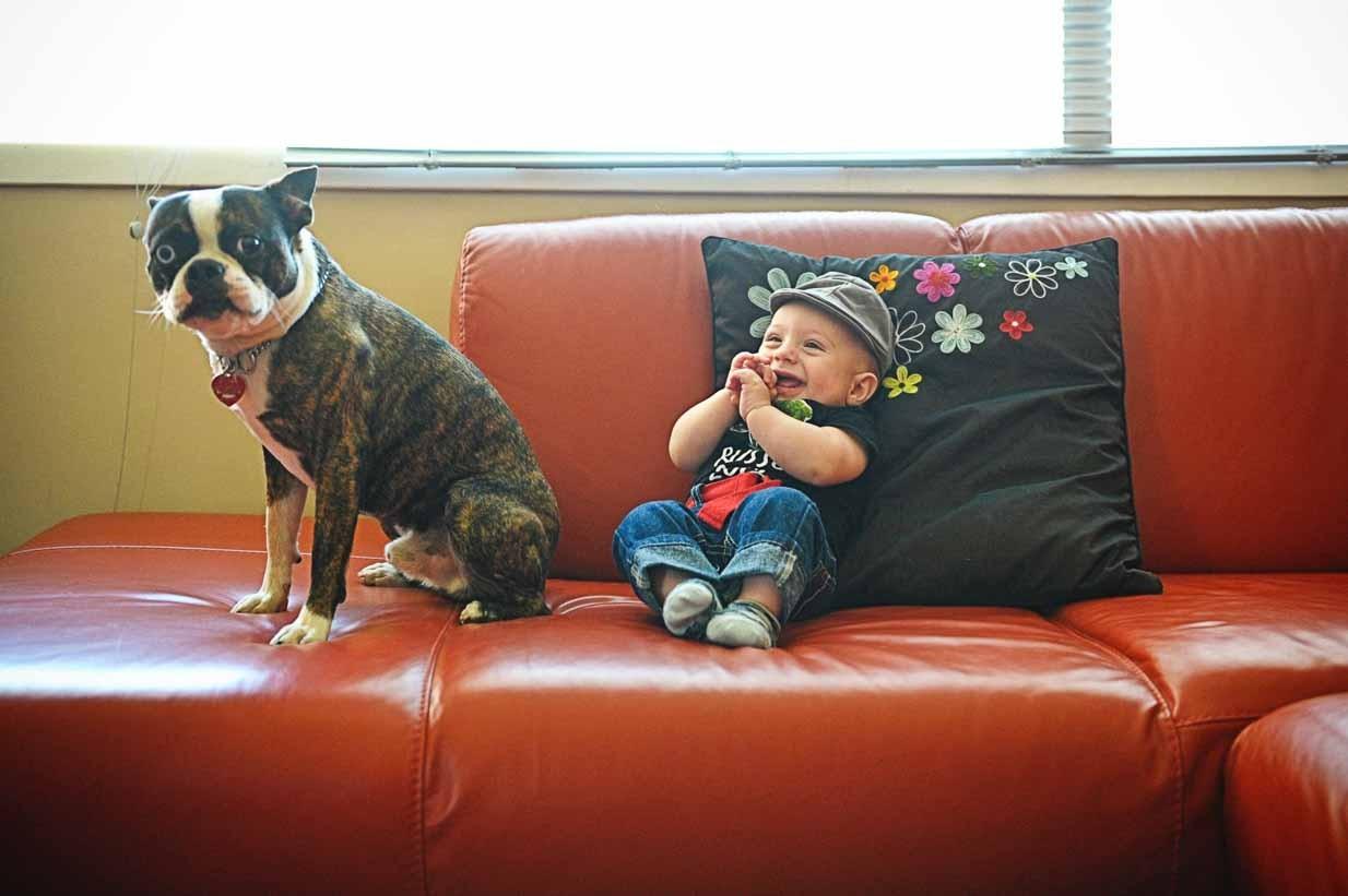 Baby and dog | Calgary Newborn Photographer | SLIVER Photography