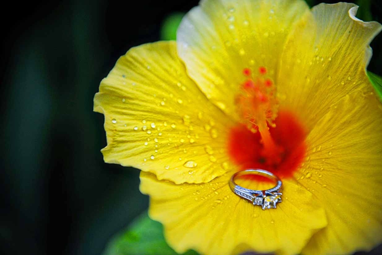 Ring and Yellow Lily | Destination Wedding Photographer | SLIVER Photography