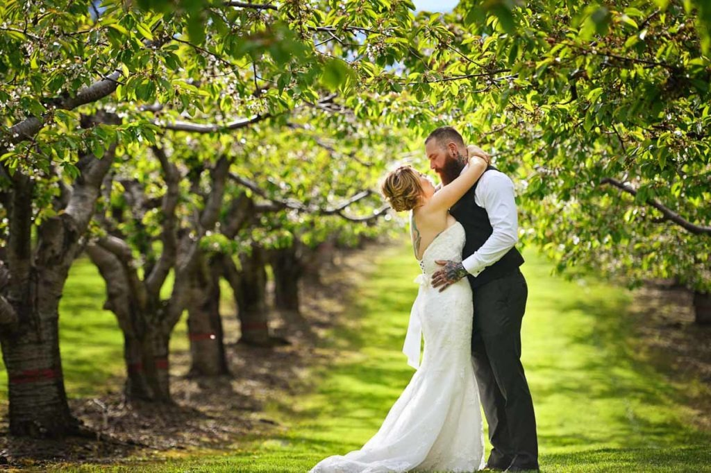 Kelowna Wedding Orchard   Destination Wedding Photographer   SLIVER Photography