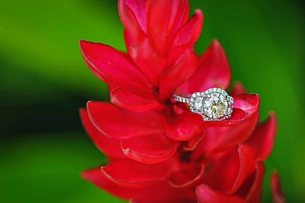 Tropical engagement ring | Destination Wedding Photographer | SLIVER Photography