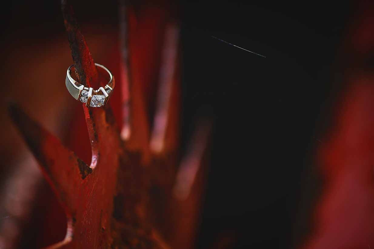 Wedding Ring and Web | Destination Wedding Photographer | SLIVER Photography