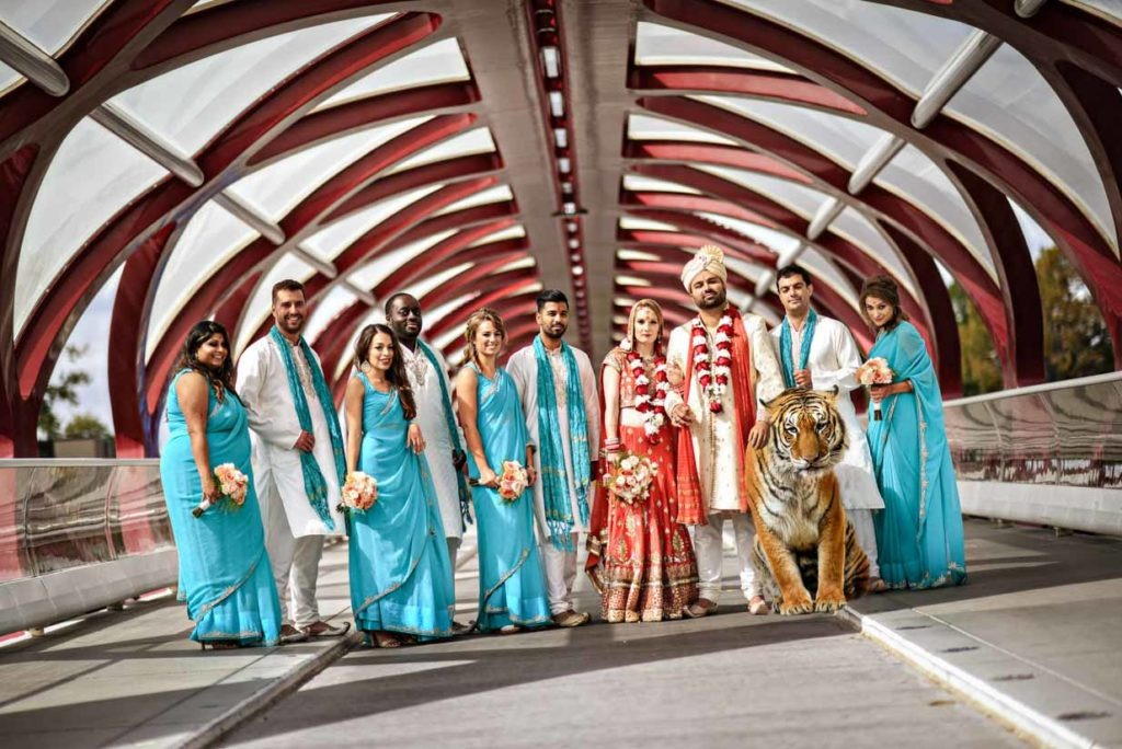 Indian Bridal Party with Tiger | Destination Wedding Photographer | SLIVER Photography