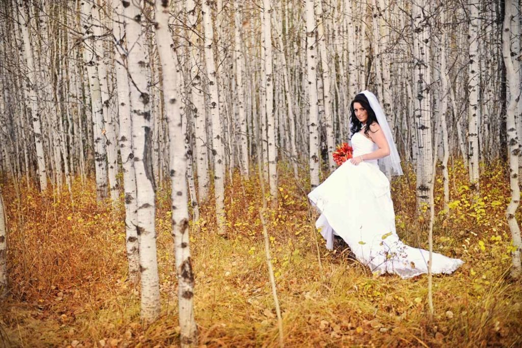 Bride and Birch | Destination Wedding Photographer | SLIVER Photography